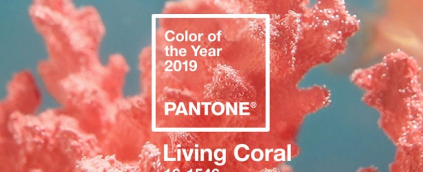 pantone living coral content 2019